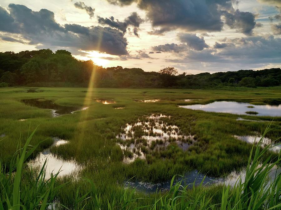 Barn Island Wetlands Photograph