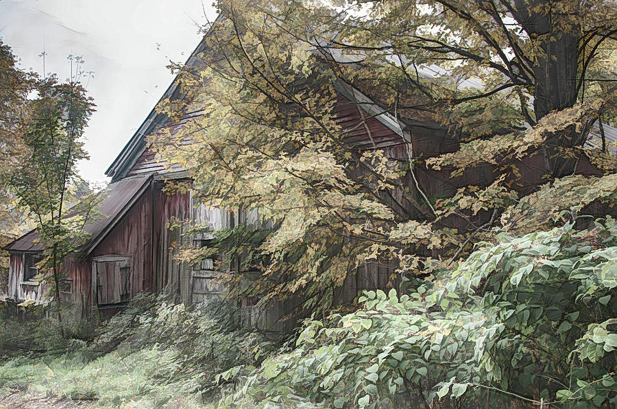Barn mixed with yellow fall colors in Autumn by Jeff Folger