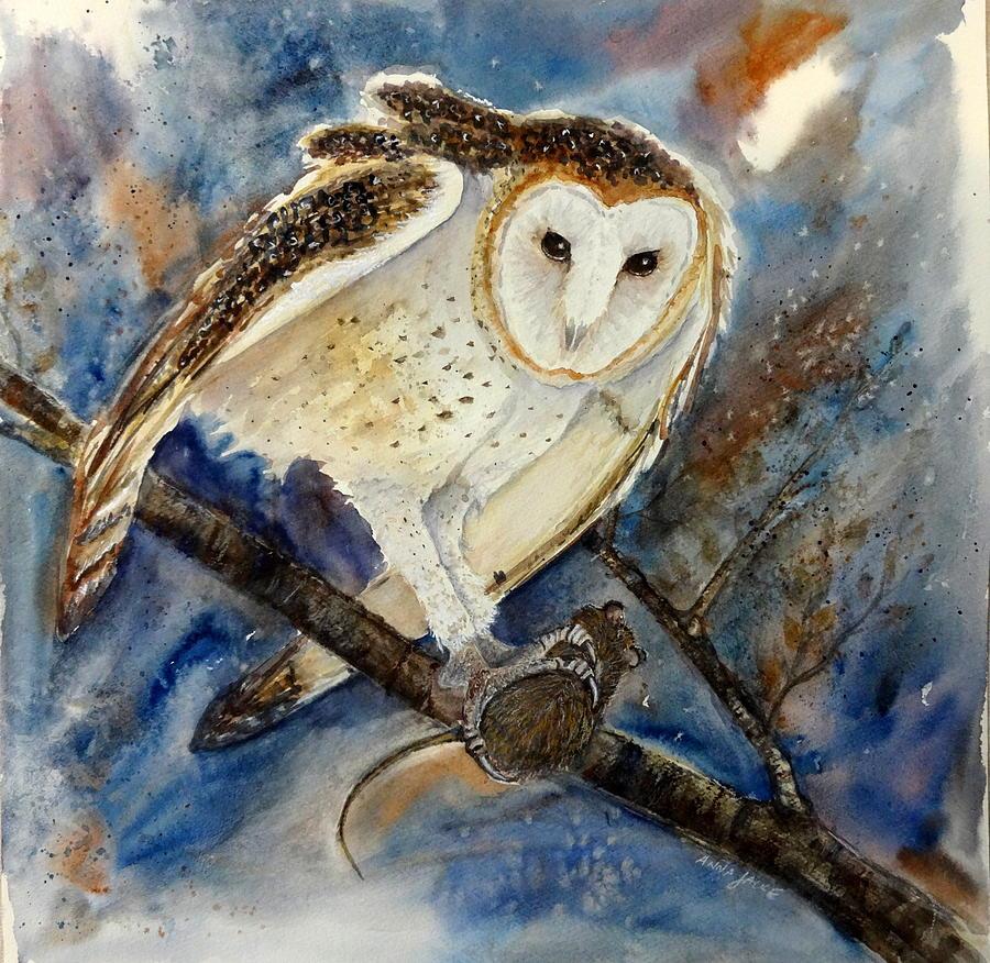 Barn Owl by Anna Jacke
