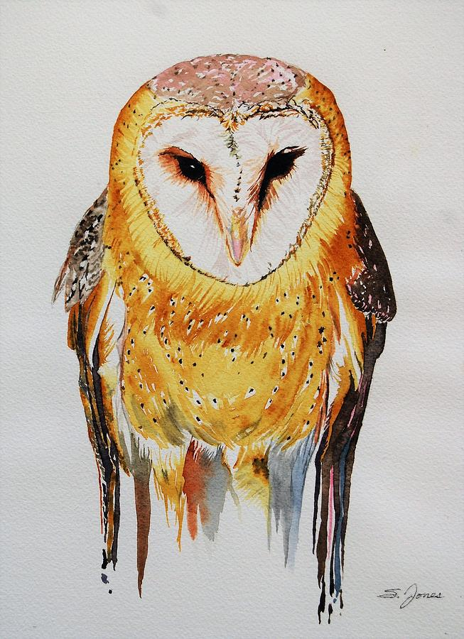 Barn Owl Drip by Sonja Jones