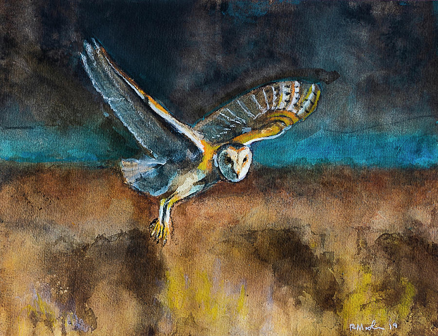 Barn Owl  by Rick Mosher