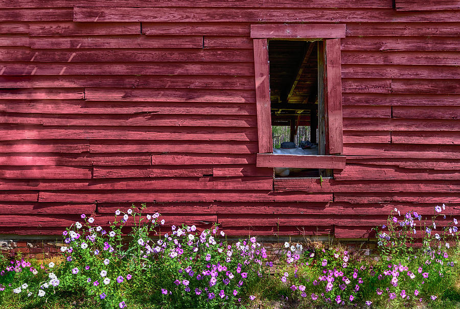 Barn Window Wild Flowers #3745 by Susan Yerry