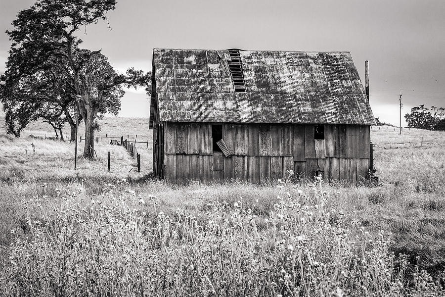 Barn with Metal Roof in Monochrome by Randy Bayne