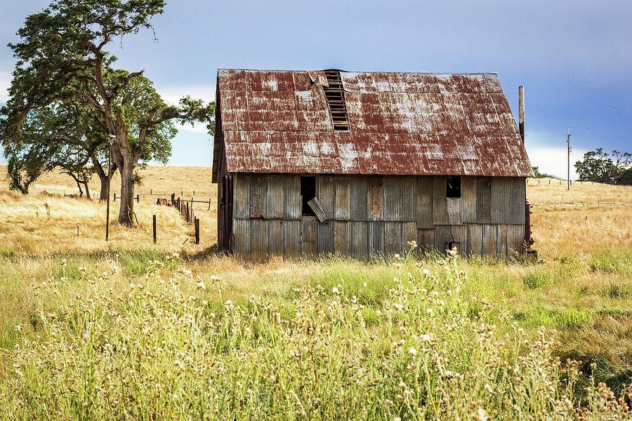 Barn with Metal Roof by Randy Bayne