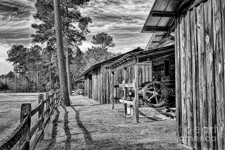 Barns by Irene Dowdy