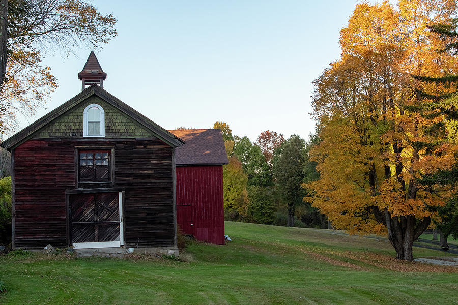 Barns with yellow fall color by Jeff Folger