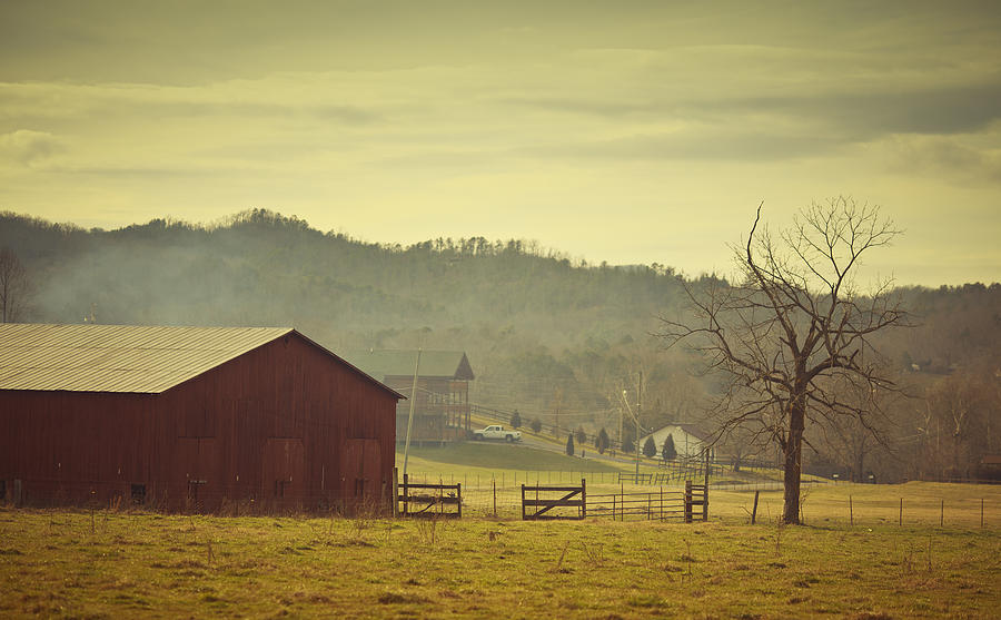 Barnyard In Wears Valley Photograph by Thepalmer