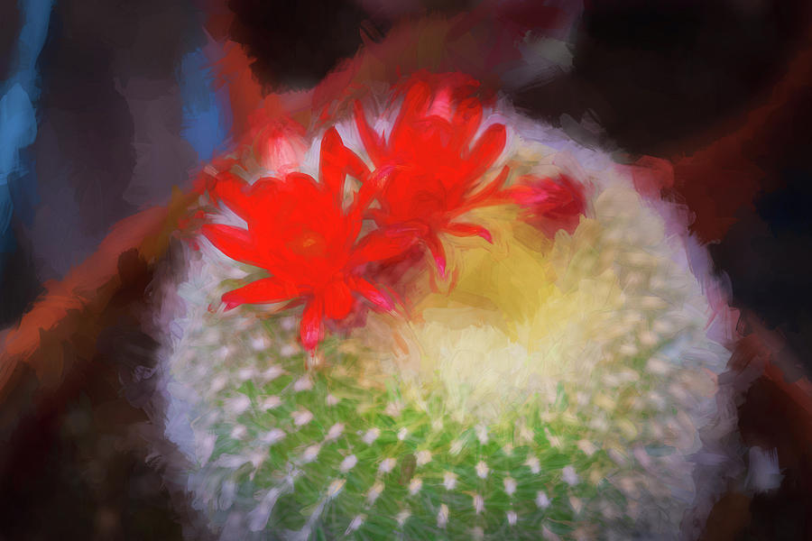 Barrel Cactus Blossom 92 by Rich Franco