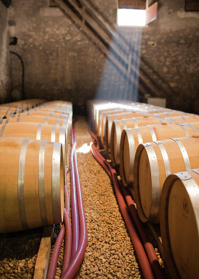 Barrels In Wine Cellar Photograph by Johner Images