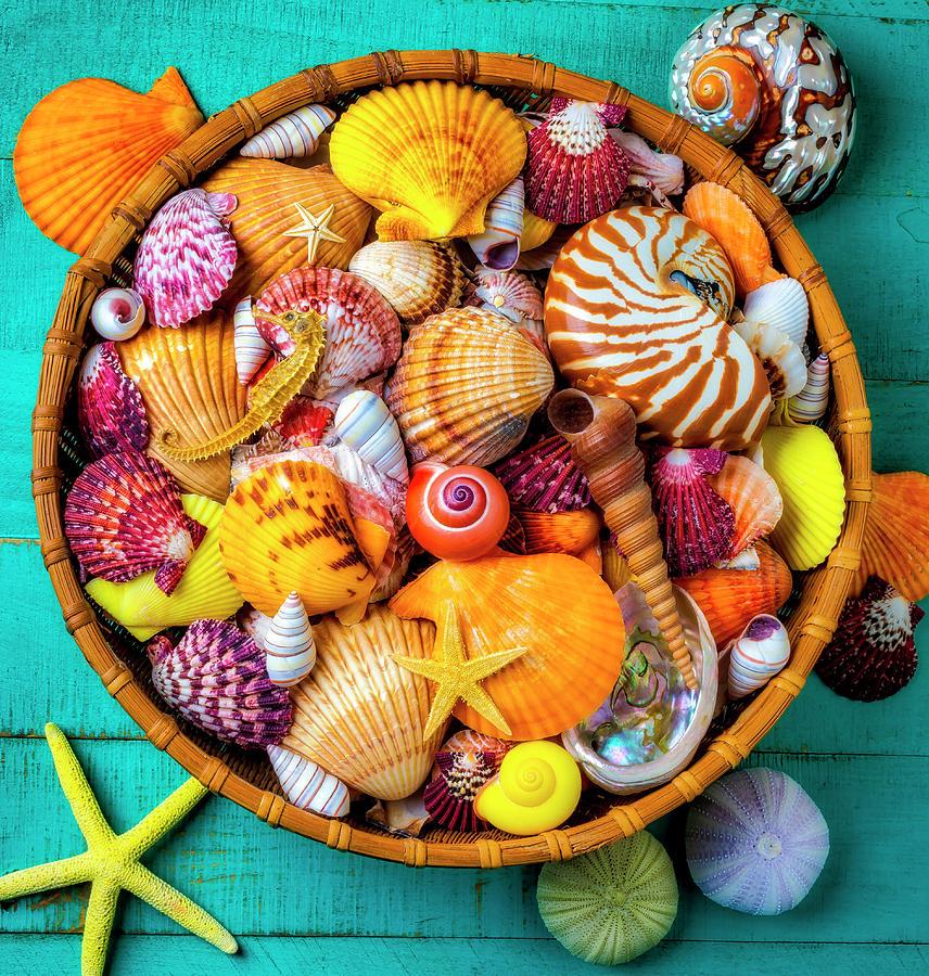Basket Full Of  Beautiful Seashells by Garry Gay