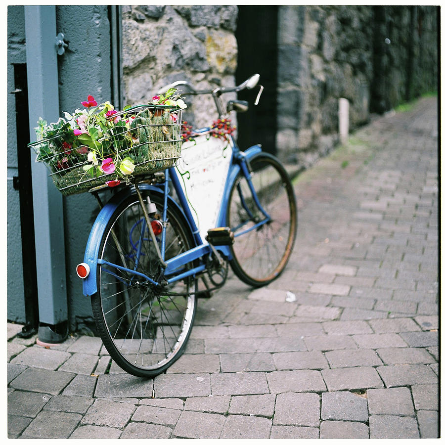 Basket Of Flowers On Old Blue Bicycle Photograph by Ailbhe Odonnell