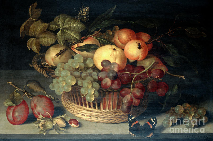 Basket Of Fruit And Admiral Butterfly Drawing by Print Collector
