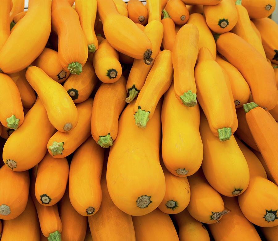 Basket Of Yellow Zucchini Photograph by Fotog
