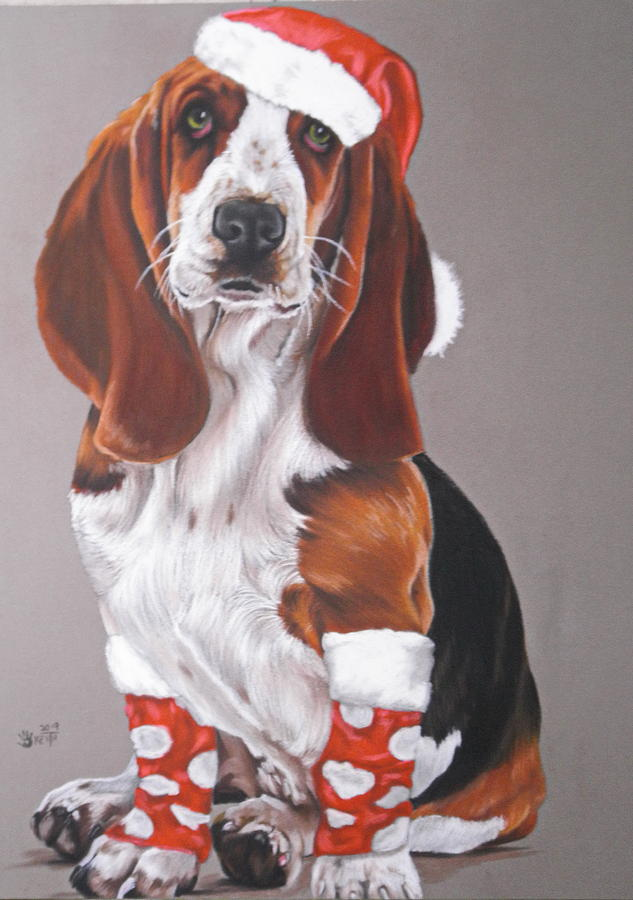Basset Complete by Barbara Keith