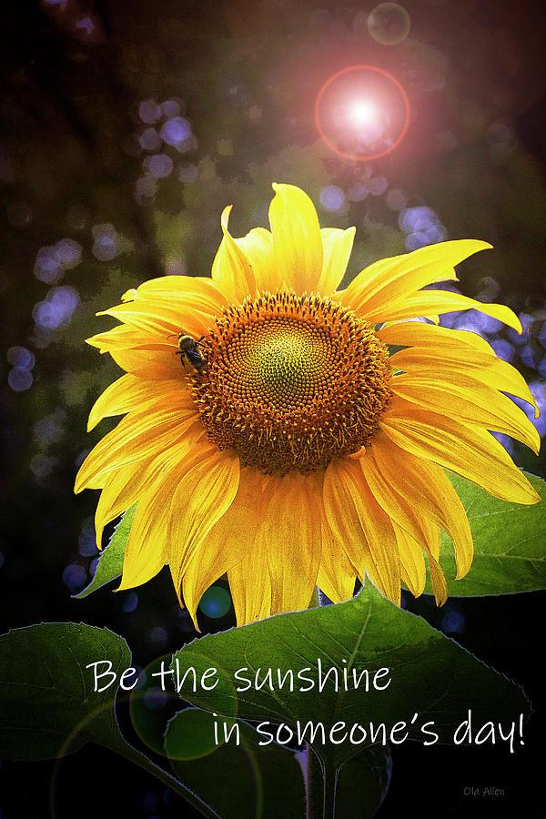 Be The Sunshine Photograph