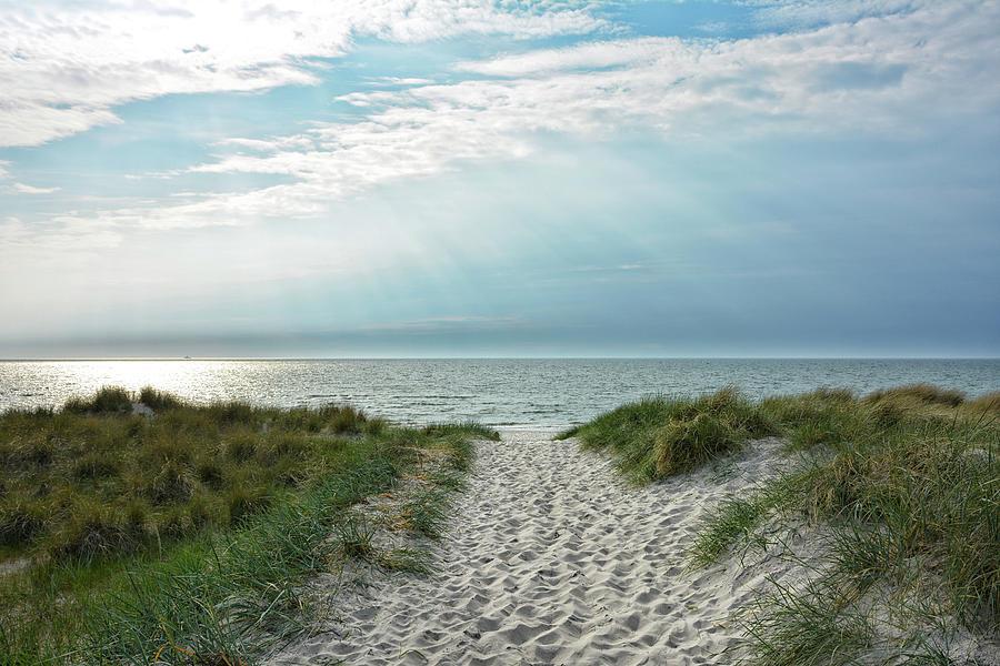 Beach Access Photograph