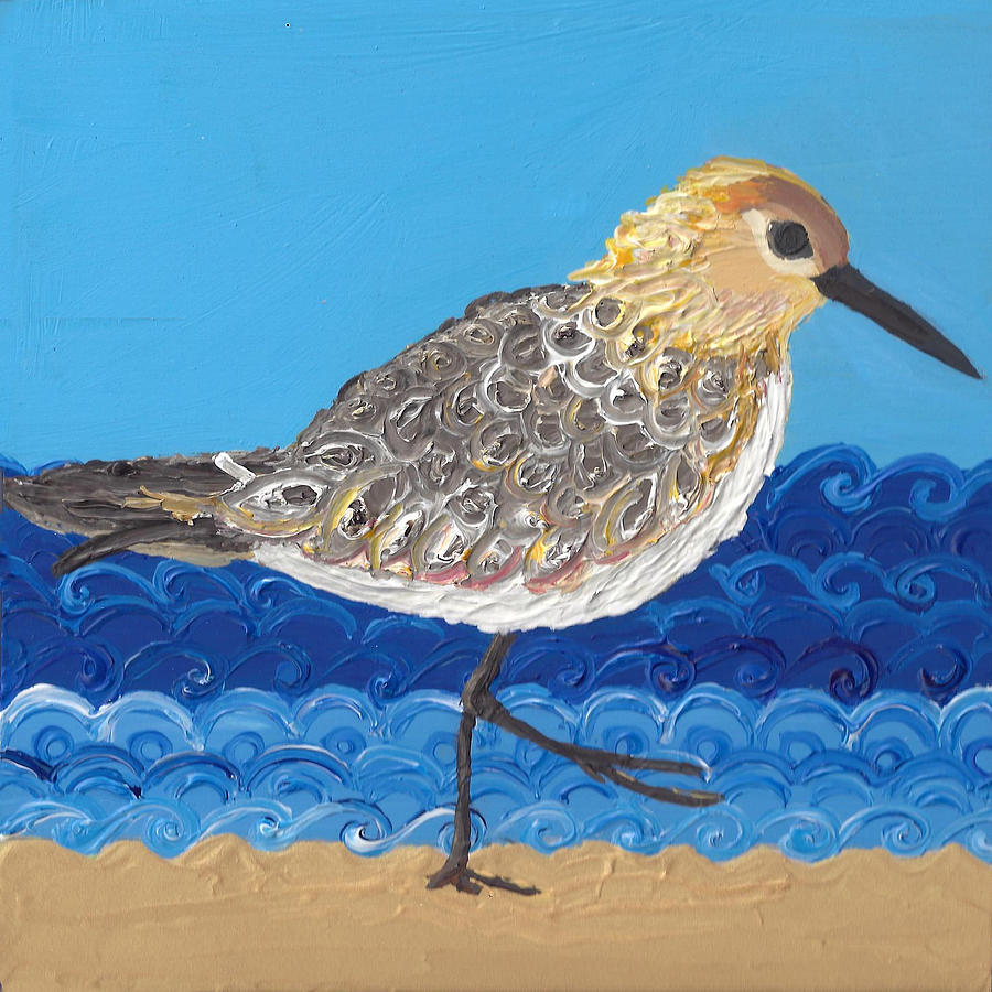 Beach Bird  by Caroline Sainis