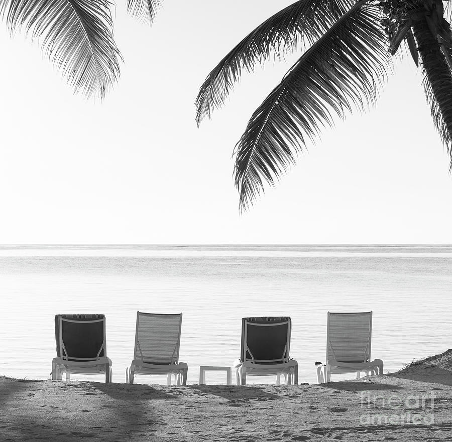 Beach Chairs Vintage Background Black and White by Tim Hester