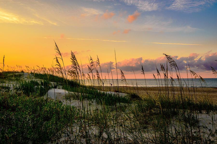 Beach Combing by John Harding