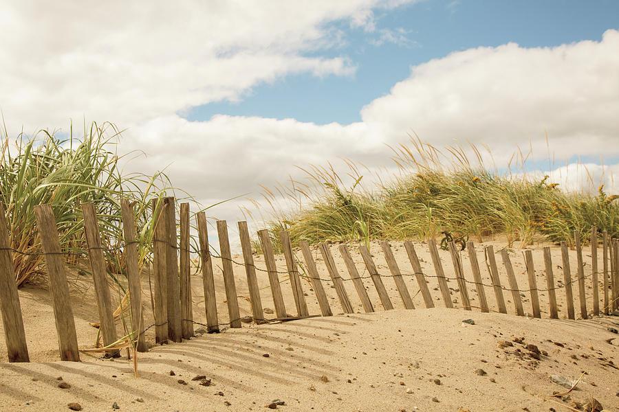 Beaches Painting - Beach Dunes I by Aledanda