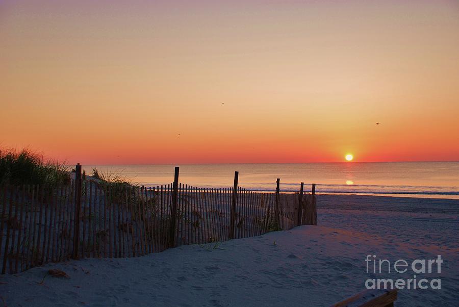 Beach Dunes by Joseph Perno