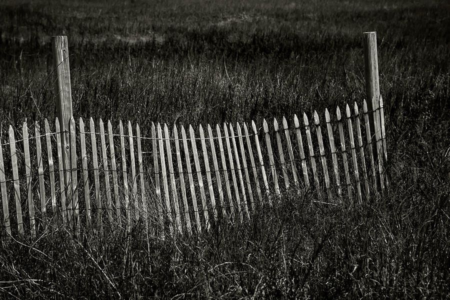 Beach Fence by Bud Simpson