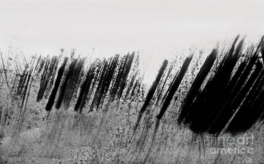 Beach Fence Shadows Black And White 300 Painting