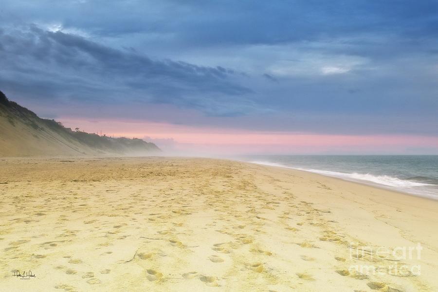 Beach Fog Photograph by Heather Hubbard