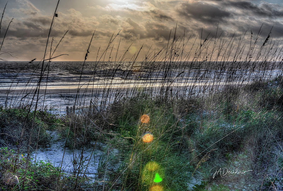 Beach Frosting by Joseph Desiderio