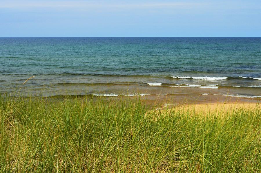 Beach Grass Photograph