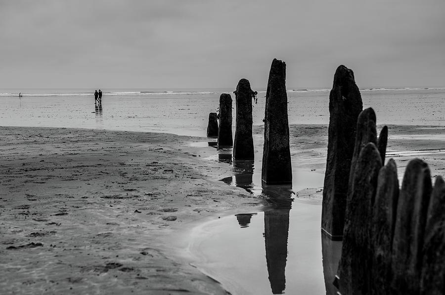 Beach Groins by Helen Northcott