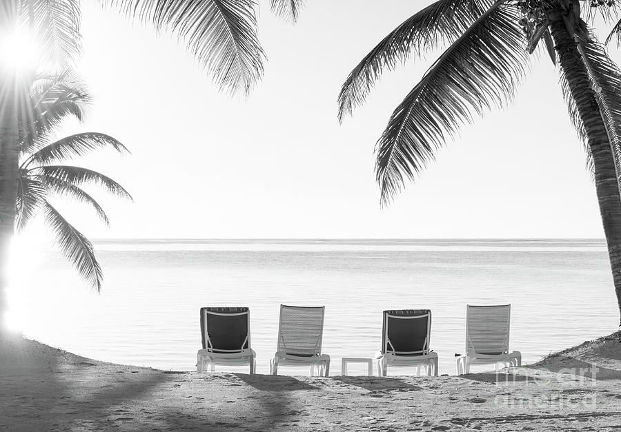 Beach Holiday Deckchairs Black and White by Tim Hester
