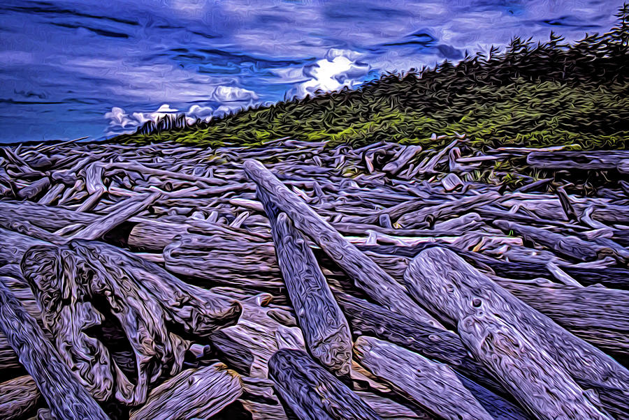 Beach Logs Clutter by Richard Farrington