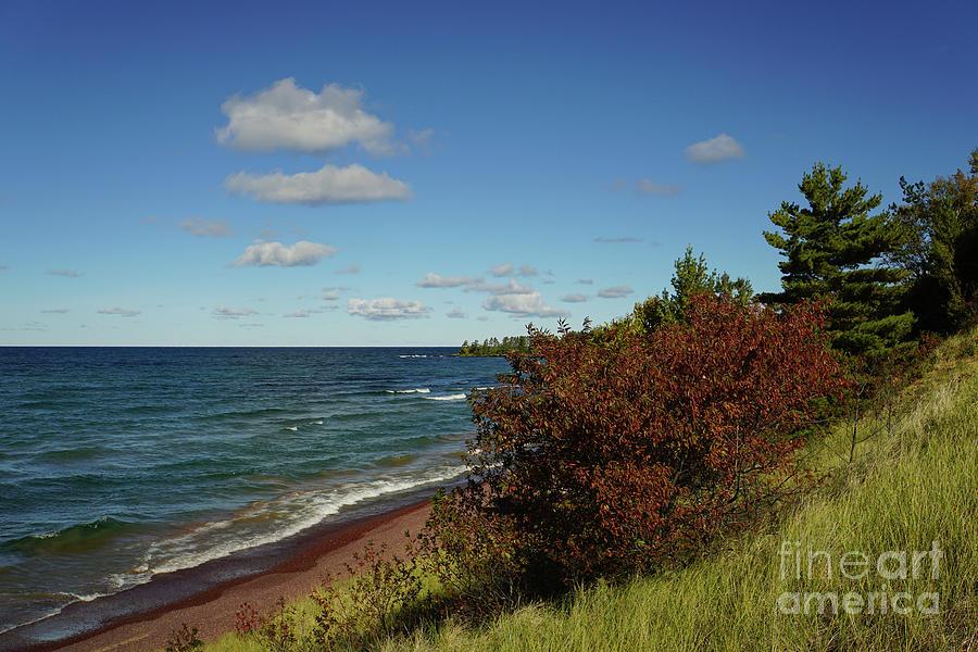 Beach Near Eagle Harbor Photograph