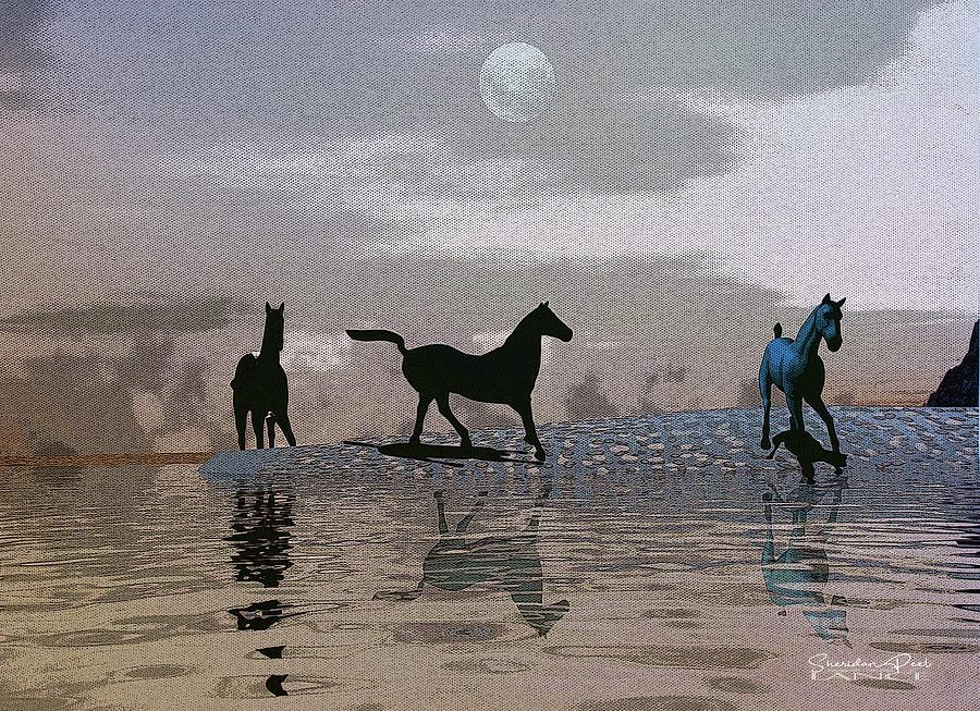 Beach Of Wild Horses by Lance Sheridan-Peel
