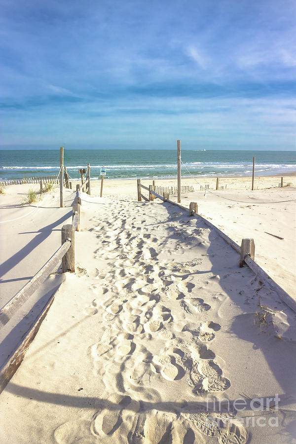 Beach Path by Colleen Kammerer