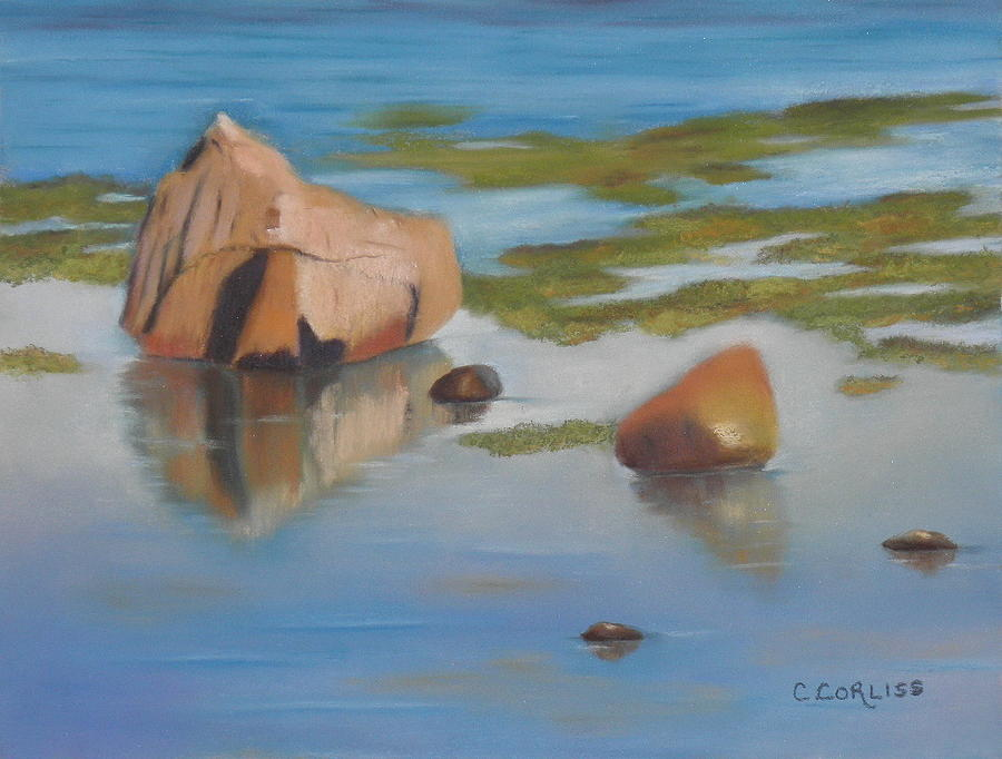 Beach Reflections by Carol Corliss
