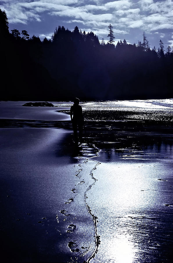 Beach Stick, La Push by SCENIC EDGE PHOTOGRAPHY