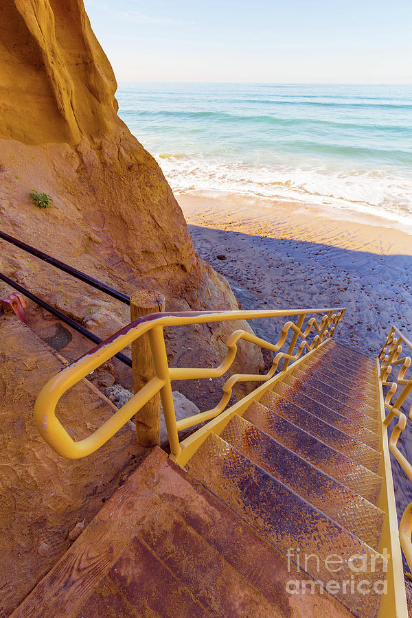Torrey Pines Photograph - Beach Trail Torrey Pines State Park by Edward Fielding