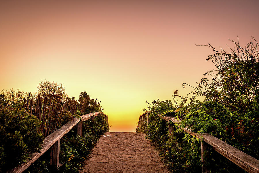 Path Over The Dunes At Sunrise. by Jeff Sinon