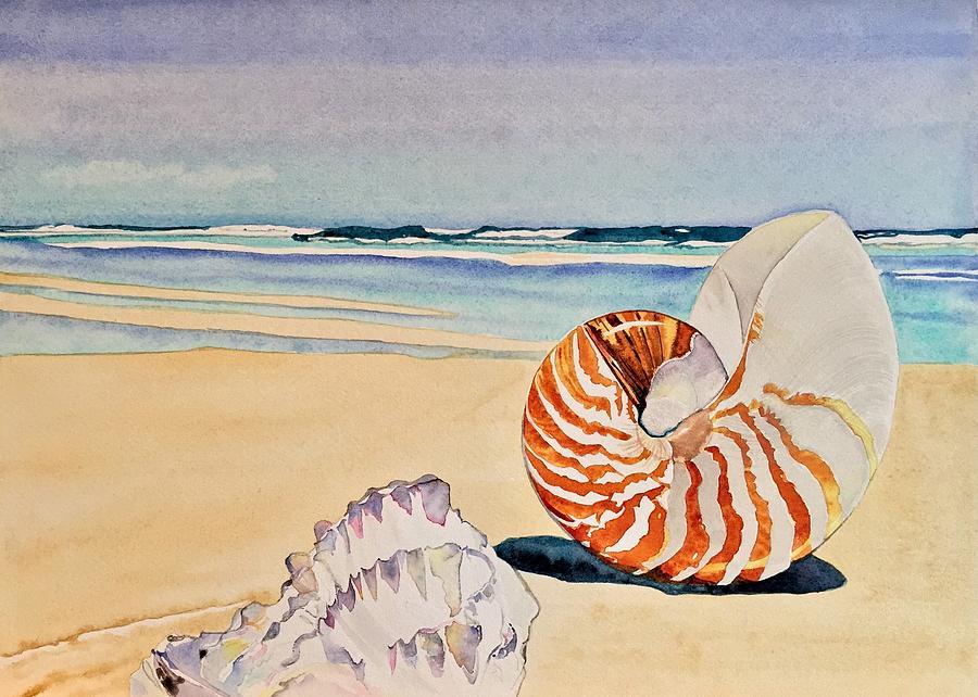 Beachcomber by Sonja Jones