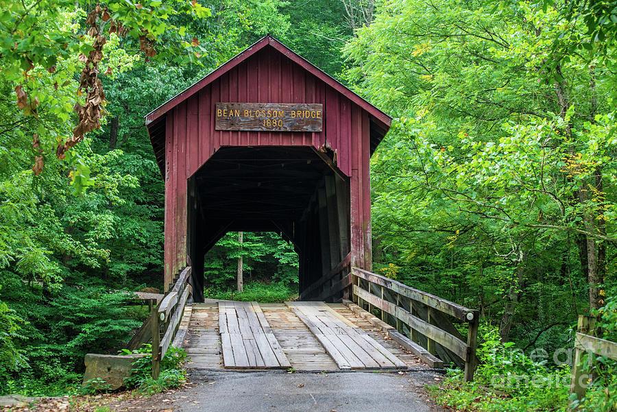 Bean Blossom Bridge - Brown County - Indiana by Gary Whitton