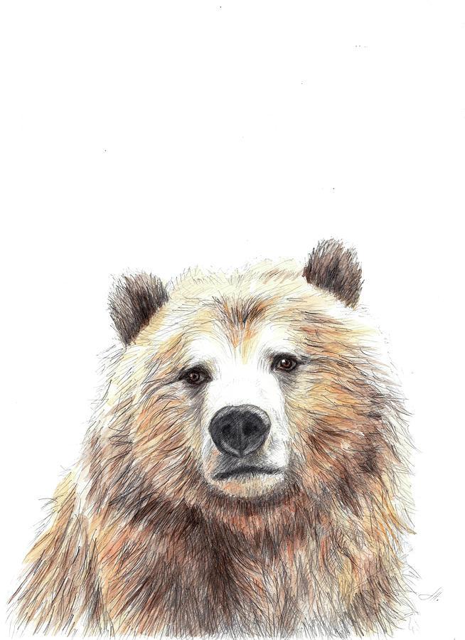 Image Drawing - Bear by Anna Abramskaya