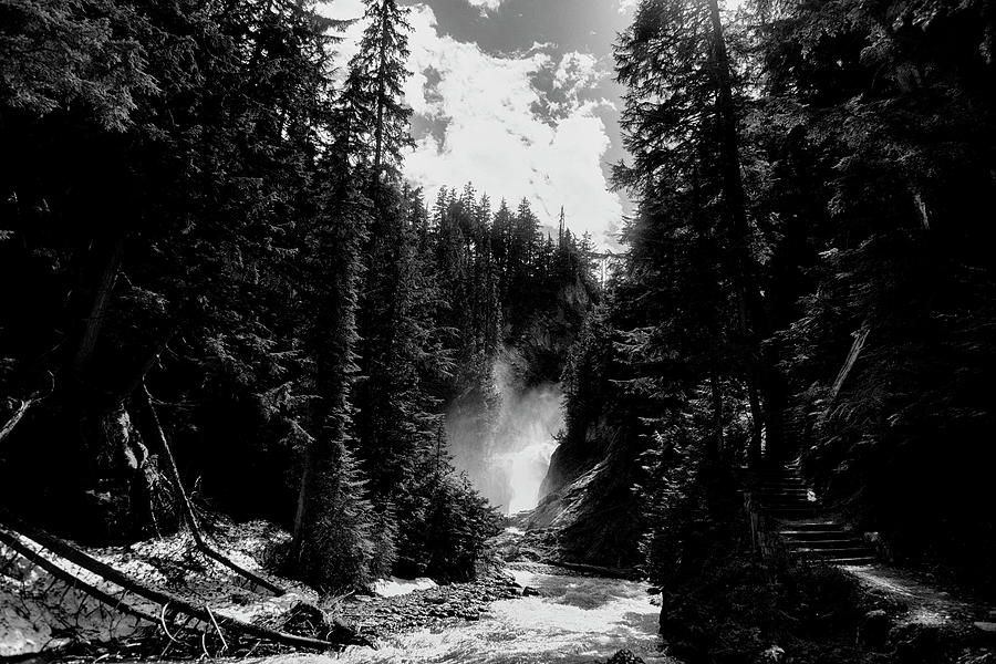 Bear Creek Pathway In Black And White Photograph