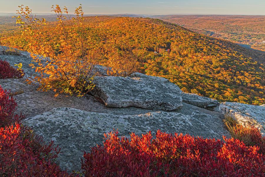 Bear Hill Autumn Vista by Angelo Marcialis