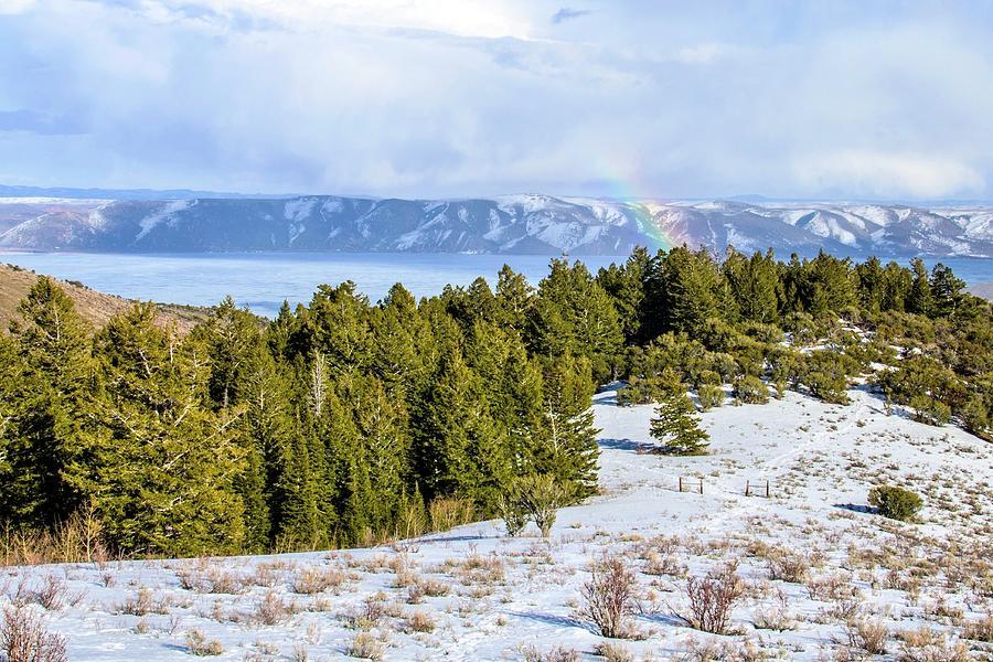 Bear Lake Scenic Byway Photograph by ©anitaburke