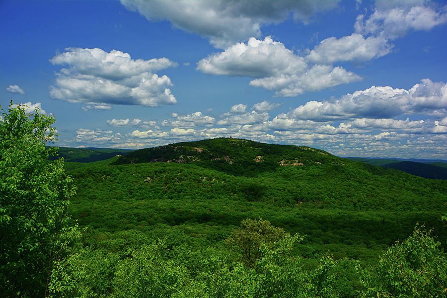 Bear Mountain From West Mountain in June by Raymond Salani III