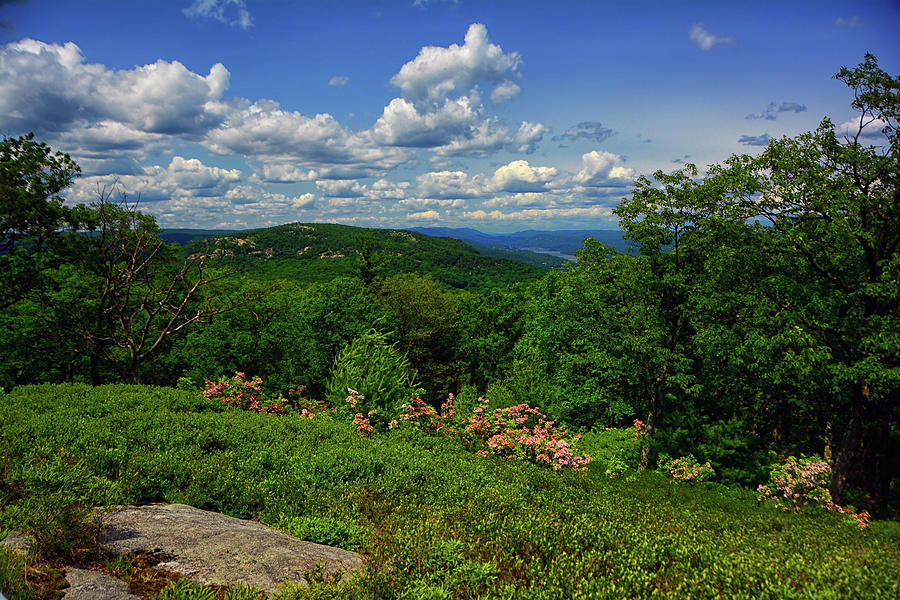 Bear Mountain, Mountain Laurel, Hudson River from West Mountain by Raymond Salani III