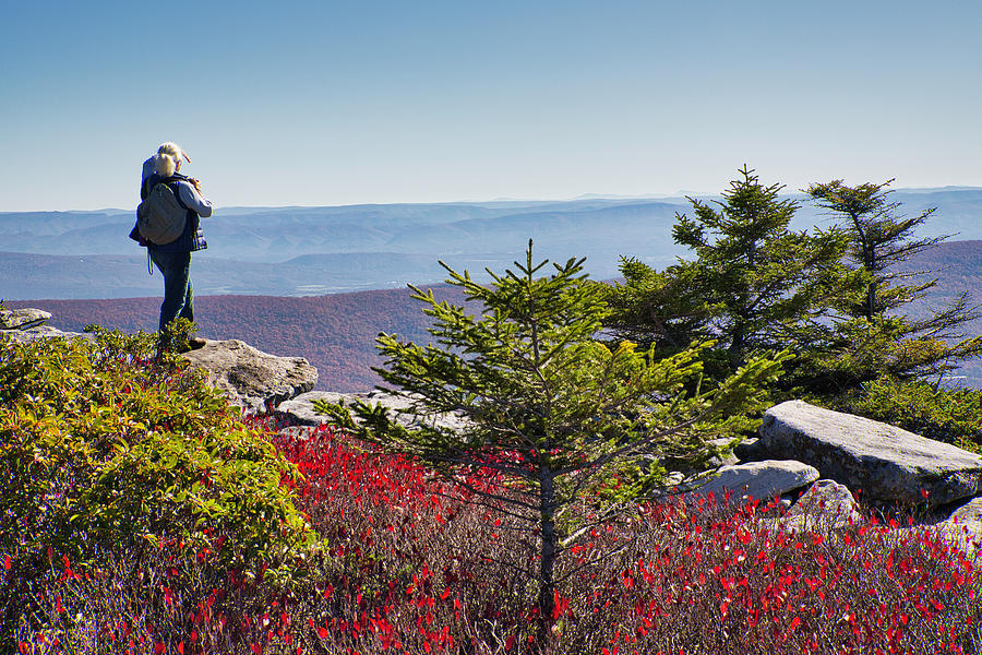 Bear Rock Overlook by Fran Gallogly