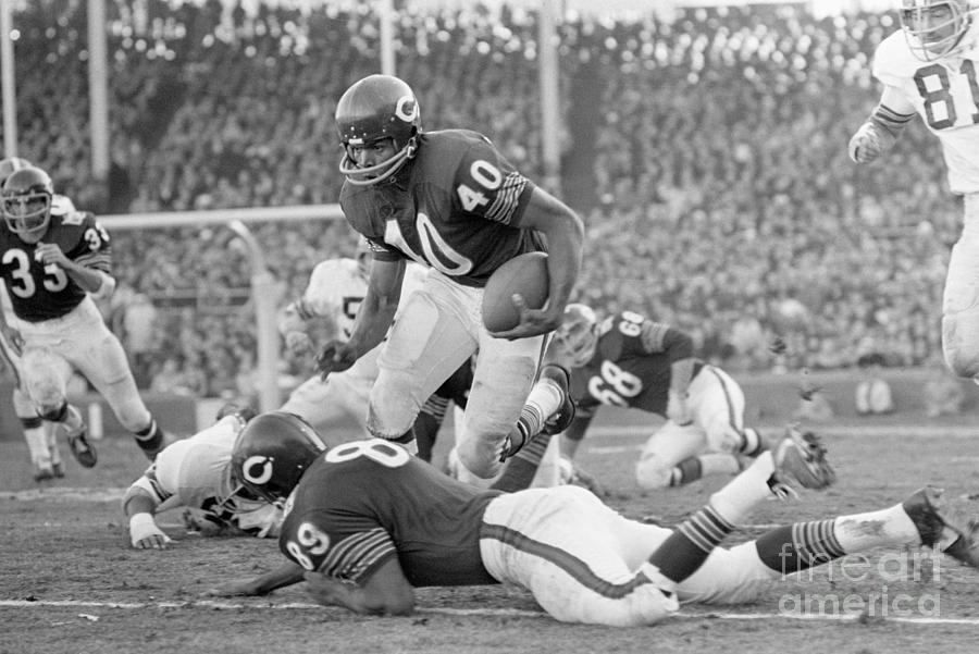 Bears Gayle Sayers Rushing During A Game Photograph by Bettmann
